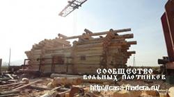Сибирский лес строй